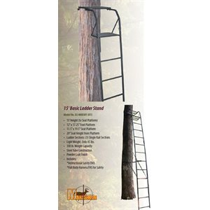 15' BASIC LADDER STAND